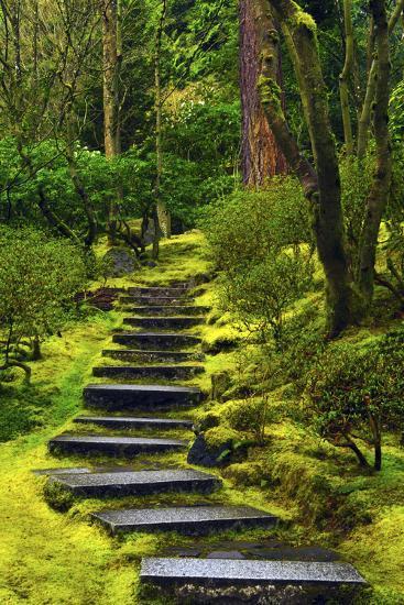 Portland Japanese Garden Store: Spring On The Steps, Portland Japanese Garden, Portland