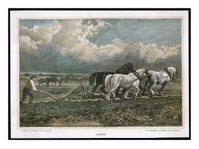 https://imgc.artprintimages.com/img/print/spring-ploughing-the-field-with-three-shire-horses_u-l-p9v7p50.jpg?p=0