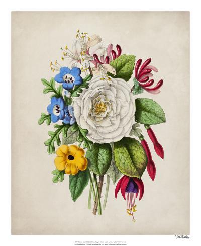 Spring Posy III-Winslow Peachy-Giclee Print