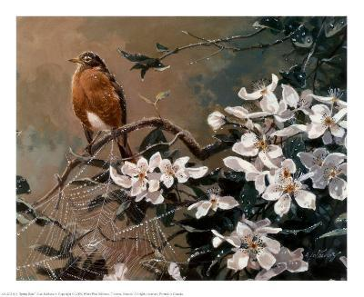 Spring Rain-Alan Sakhavarz-Art Print