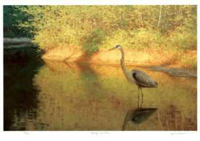 Spring Reflections-Claudio D'Angelo-Collectable Print