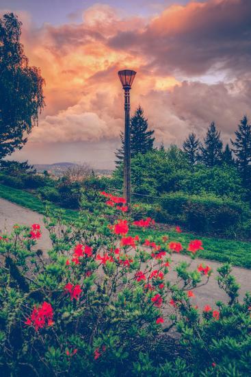 Spring Storm at Pittock Mansion, Portland Oregon--Photographic Print
