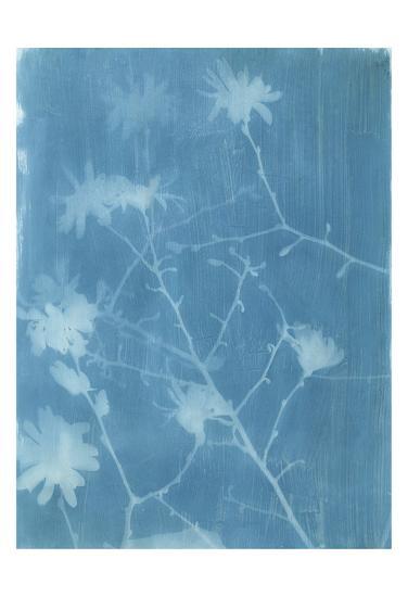 Spring Time Magnolia 2-Smith Haynes-Art Print