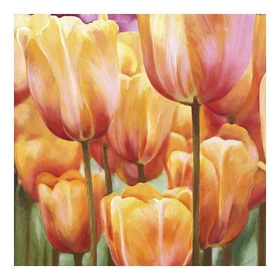 Spring Tulips II-Luca Villa-Art Print