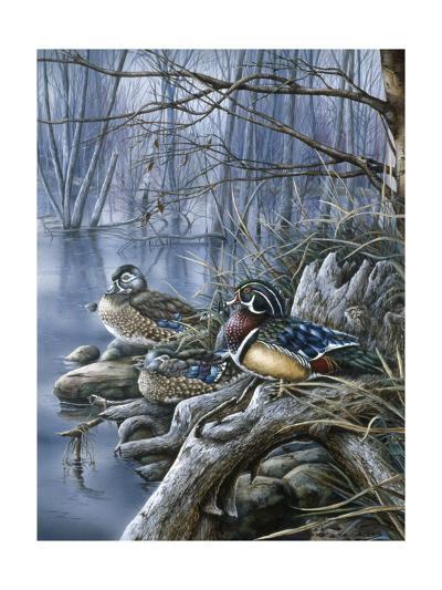 Spring Woodies-Wanda Mumm-Giclee Print