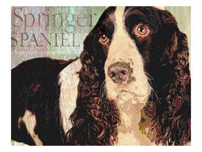 Springer Spaniel-Wendy Presseisen-Premium Giclee Print