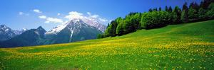 Springtime Bavarian Alps Germany