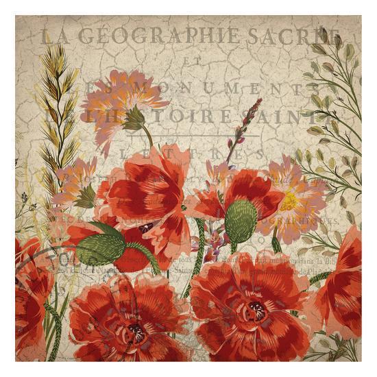 Springtime Blooms-Kimberly Allen-Art Print