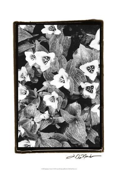 Springtime Garden I-Laura Denardo-Art Print