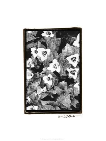 https://imgc.artprintimages.com/img/print/springtime-garden-i_u-l-pfry4h0.jpg?p=0