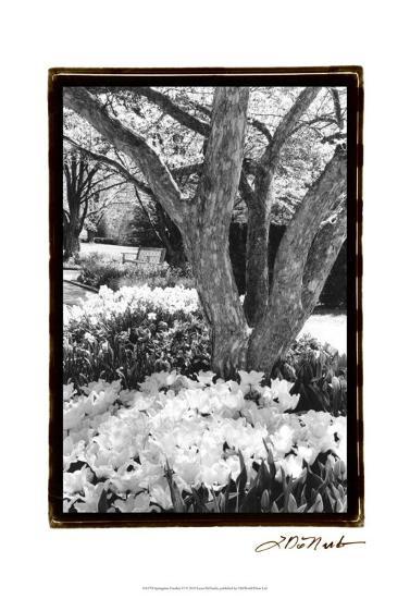 Springtime Garden VI-Laura Denardo-Art Print