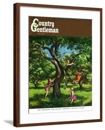 """""""Springtime in Tree,"""" Country Gentleman Cover, May 1, 1950-Lawrence Beall Smith-Framed Giclee Print"""