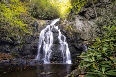 Spruce Flat Falls-Danny Head-Photographic Print