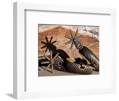 Spur 1-Barry Hart-Framed Art Print
