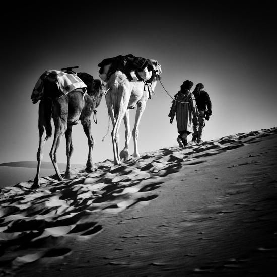 Square Black & White Image of 2 Men and 2 Camels in Sahara Desert-ABO PHOTOGRAPHY-Photographic Print