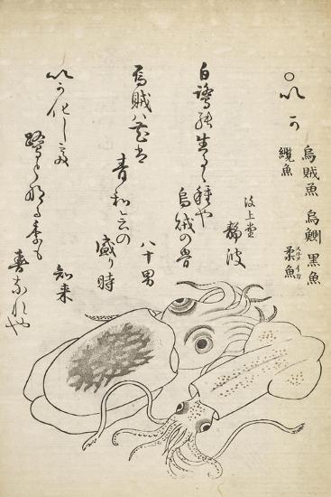 Squid-Katsuma Ryusai-Giclee Print