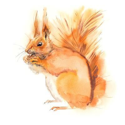 Squirrel Eats. Decoration with Wildlife Scene. Pattern from Forest Inhabitant. Watercolor Hand Draw-Marya Kutuzova-Art Print