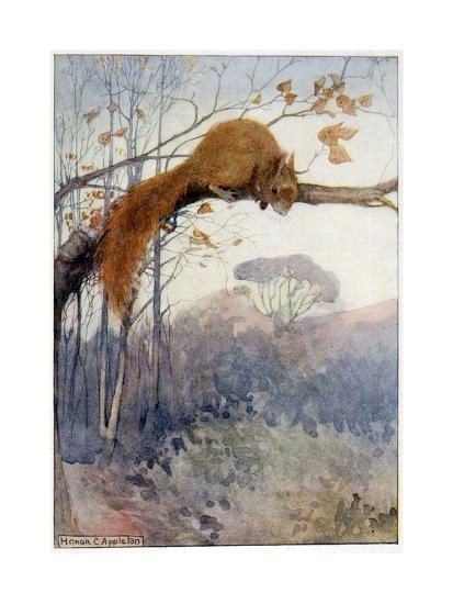 Squirrel in Tree C1917-Honor C. Appleton-Giclee Print