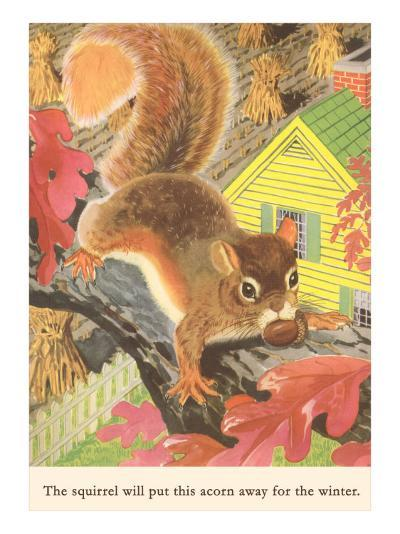 Squirrel with Acorn--Art Print