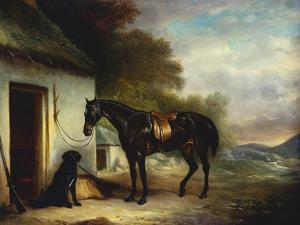 Mr Stuart's Favourite Hunter, Vagabond and His Flatcoated Retriever, Nell by a Cottage Door by Sr John Ferneley