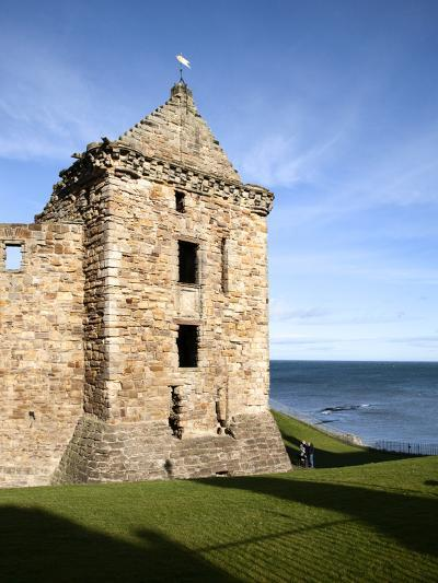 St Andrews Castle, St Andrews, Fife, Scotland-Mark Sunderland-Photographic Print