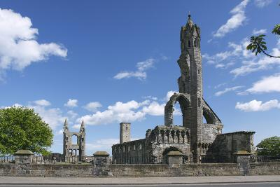 St Andrews Cathedral and St Rules Tower, Fife, Scotland, 2009-Peter Thompson-Photographic Print