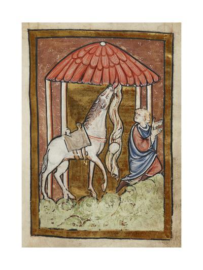 St. Cuthbert's Horse Pulls Down Bread and Meat-Bede-Giclee Print