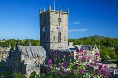 St. Davids Cathedral, Pembrokeshire, Wales, United Kingdom-Billy Stock-Photographic Print