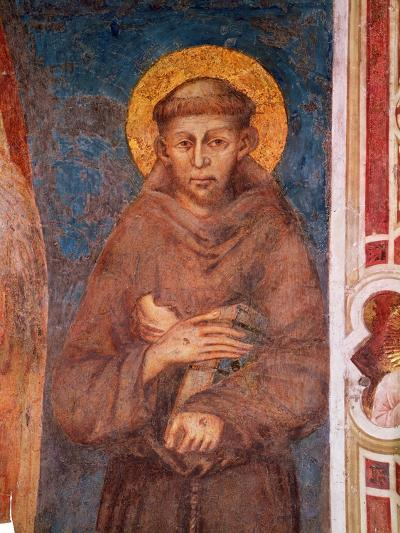 St. Francis (Detail)-Cimabue-Giclee Print