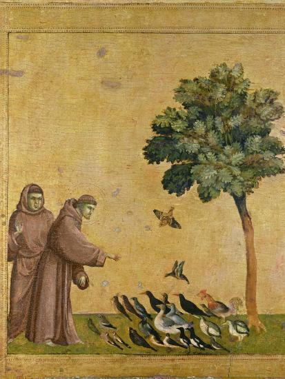 St. Francis of Assisi preaching to the birds. Ca. 1295-1300 (Predella, see also Image ID 19398)--Giclee Print
