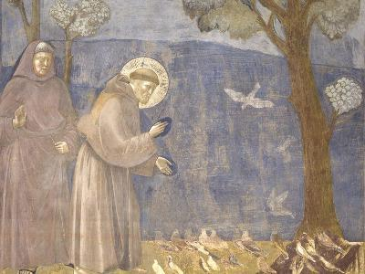 St. Francis Preaching to the Birds-Giotto-Art Print