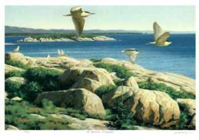 St. Lawrence Archipelago-Claudio D'Angelo-Limited Edition