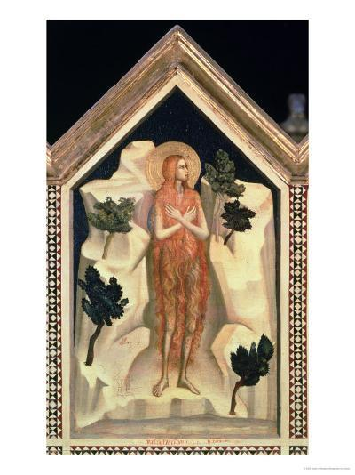 St. Mary Magdalene, from the St. Reparata Polyptych (Detail)-Giotto di Bondone-Giclee Print