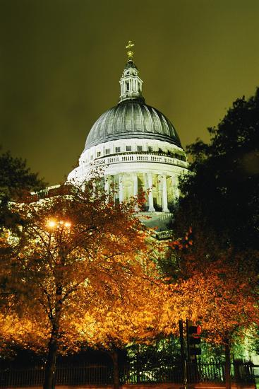 St Paul's Cathedral at Night with Trees-Design Pics Inc-Photographic Print