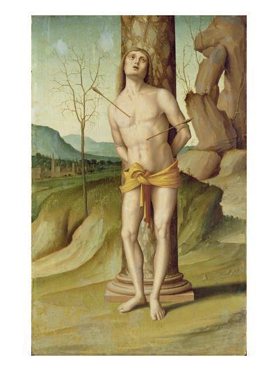 St. Sebastian (Oil on Panel)-Marco Palmezzano-Giclee Print