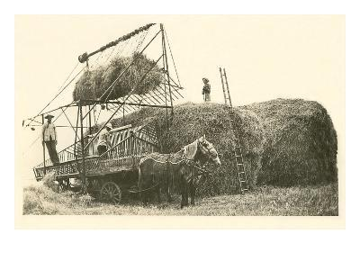 Stacking Hay--Art Print