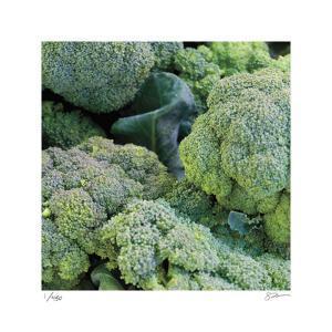 Broccoli by Stacy Bass