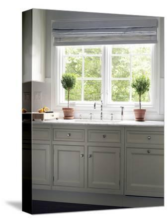 Houseplants at Kitchen Window in Contemporary Transitional Townhouse