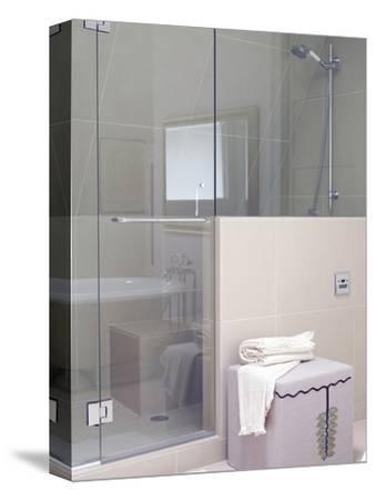 Shower Area in Modern Bathroom