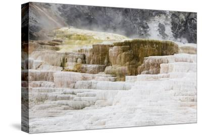 Abstract Landscape of Rock Terraces at Mammoth Hot Springs