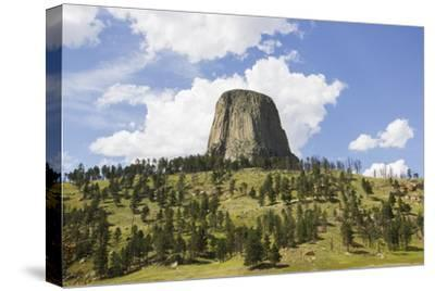 Devil's Tower Rises Above the Tree Lined Landscape Below