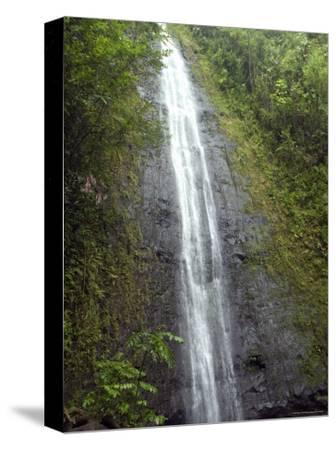 The Manoa Falls Waterfall in Honolulu, Hawaii