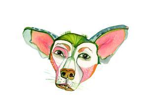 Cuba Dog, Jorge by Stacy Milrany