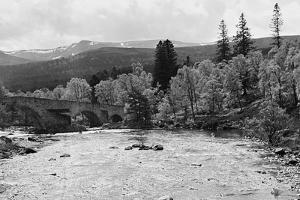 View of the River Dee, 1952 by Staff