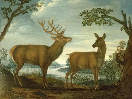 Stag and Hind in a Wooded Landscape--Giclee Print