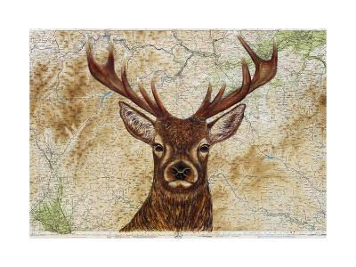 Stag-Jane Wilson-Giclee Print