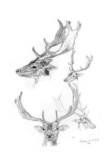 Stags' Heads, 1898-Henry Moore-Giclee Print
