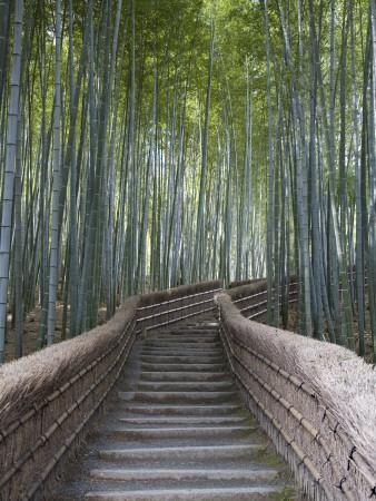 https://imgc.artprintimages.com/img/print/stairway-through-bamboo-grove-above-adashino-nembutsu-ji-temple_u-l-pxtmh10.jpg?p=0