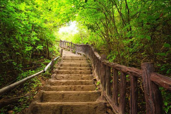 Stairway to Forest, Erawan National Park,Kanchanburi,Thailand-lkunl-Photographic Print