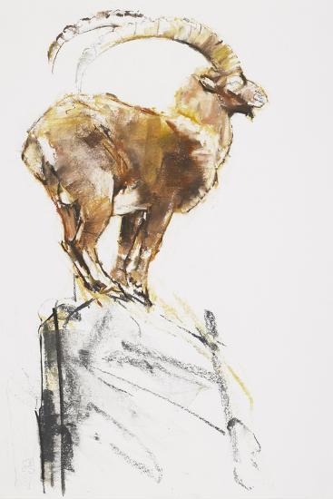 Stambecco d'Oro, 2005-Mark Adlington-Giclee Print